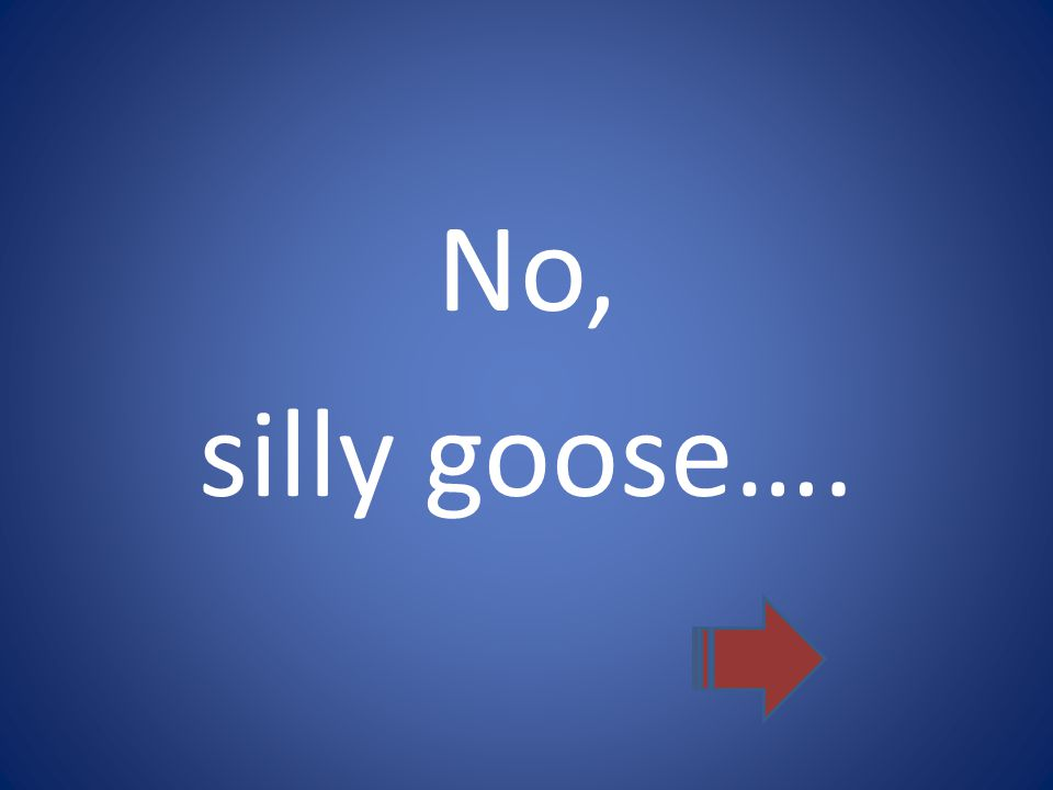 No, silly goose….
