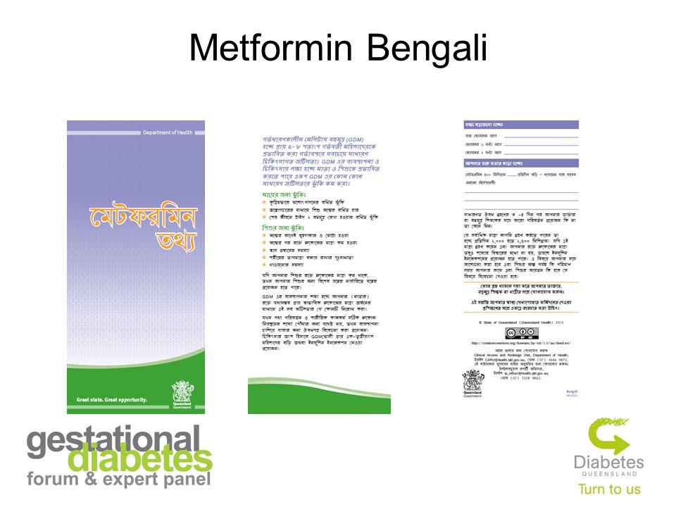 Metformin Bengali