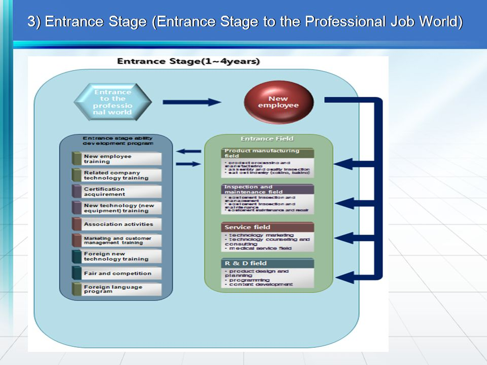 3) Entrance Stage (Entrance Stage to the Professional Job World)
