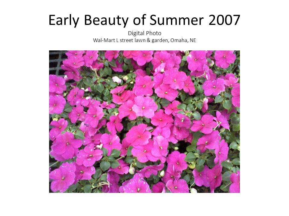 Early Beauty of Summer 2007 Digital Photo Wal-Mart L street lawn & garden, Omaha, NE