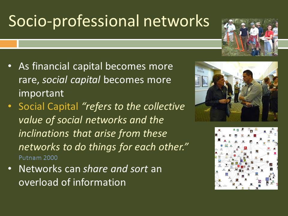 Socio-professional networks As financial capital becomes more rare, social capital becomes more important Social Capital refers to the collective value of social networks and the inclinations that arise from these networks to do things for each other. Putnam 2000 Networks can share and sort an overload of information