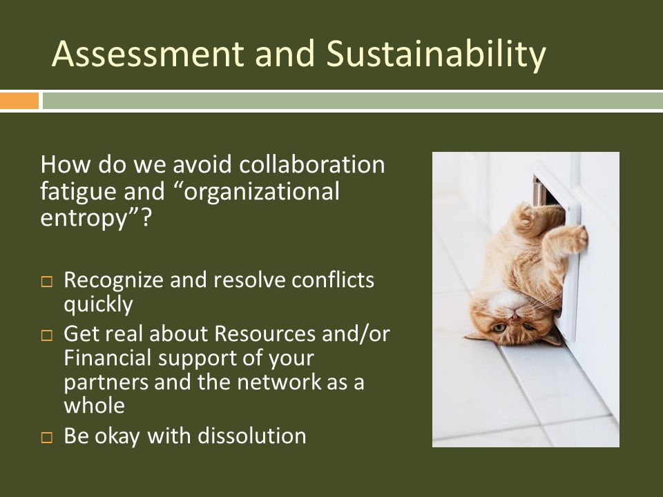 How do we avoid collaboration fatigue and organizational entropy .