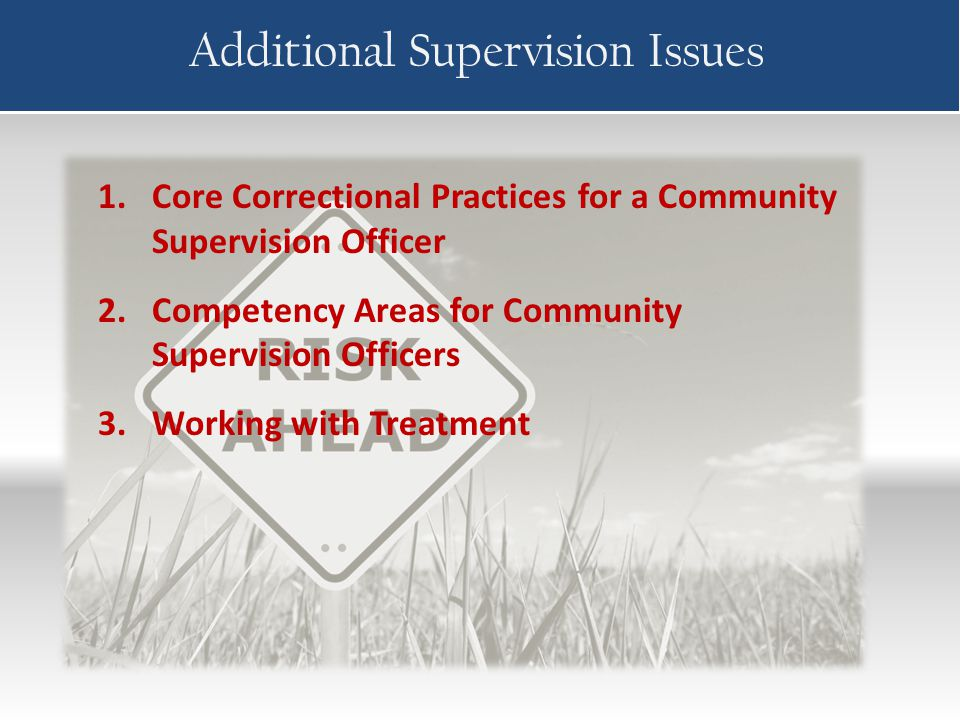 Additional Supervision Issues 1.Core Correctional Practices for a Community Supervision Officer 2.Competency Areas for Community Supervision Officers