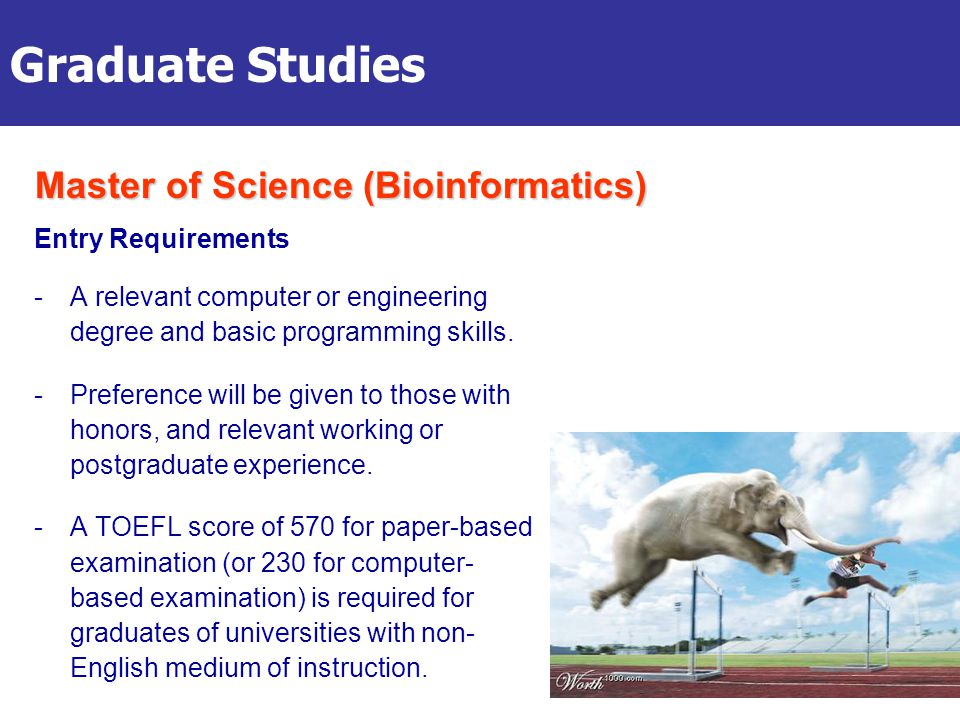 Graduate Studies Entry Requirements -A relevant computer or engineering degree and basic programming skills.