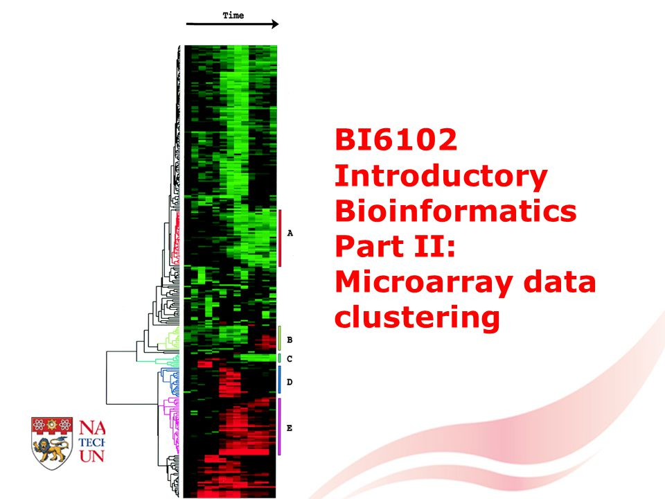 BI6102 Introductory Bioinformatics Part II: Microarray data clustering