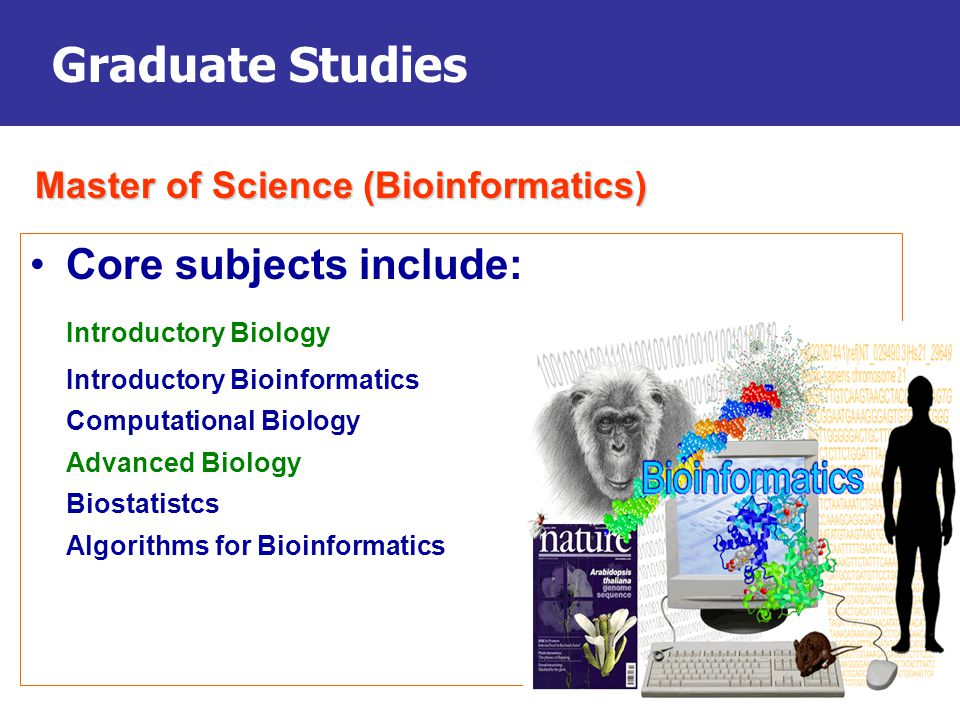 Graduate Studies Core subjects include: Introductory Biology Introductory Bioinformatics Computational Biology Advanced Biology Biostatistcs Algorithms for Bioinformatics Master of Science (Bioinformatics)