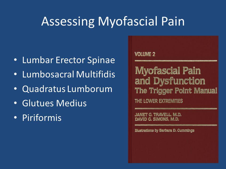Assessing Myofascial Pain Lumbar Erector Spinae Lumbosacral Multifidis Quadratus Lumborum Glutues Medius Piriformis