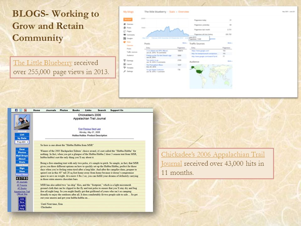 BLOGS- Working to Grow and Retain Community The Little BlueberryThe Little Blueberry received over 255,000 page views in 2013.