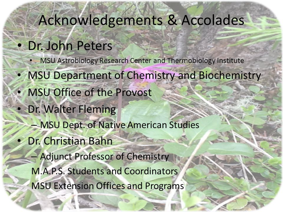 Acknowledgements & Accolades Dr.