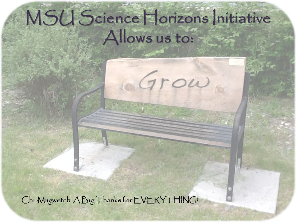 MSU Science Horizons Initiative Allows us to: Chi-Miigwetch-A Big Thanks for EVERYTHING!