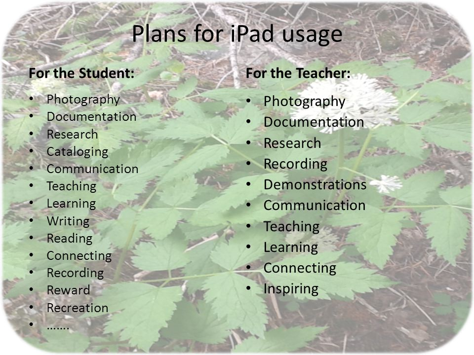 Plans for iPad usage For the Student: Photography Documentation Research Cataloging Communication Teaching Learning Writing Reading Connecting Recording Reward Recreation …….