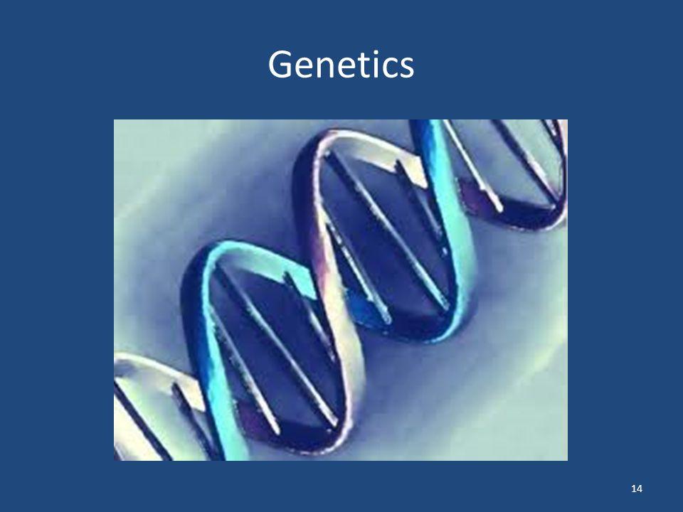 Genetics 14
