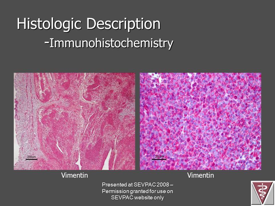 Histologic Description - Immunohistochemistry Vimentin Presented at SEVPAC 2008 – Permission granted for use on SEVPAC website only
