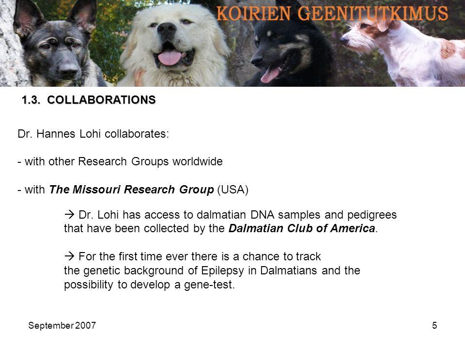 September 200716 41 DNA samples of affected dalmatians incl.