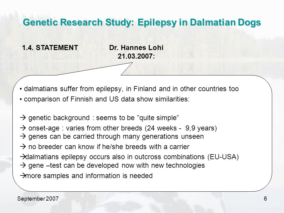 September 20077  Info from breeders/owners about affected dogs (also of dead dogs)  blood samples (affected dogs, their siblings and close relatives)  epilepsy questionnaire  financial support Genetic Research Study: Epilepsy in Dalmatian Dogs 2.1.