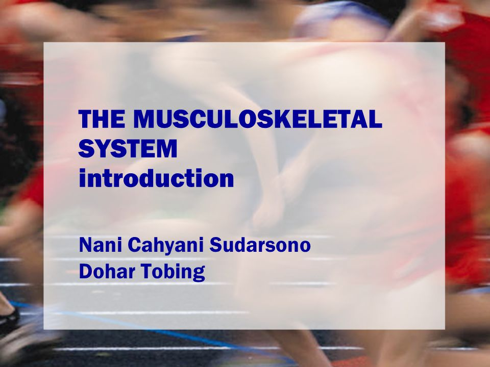 THE MUSCULOSKELETAL SYSTEM introduction Nani Cahyani Sudarsono Dohar Tobing