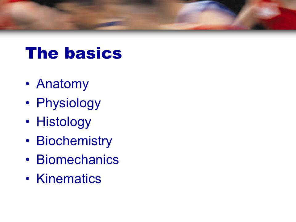 The basics Anatomy Physiology Histology Biochemistry Biomechanics Kinematics