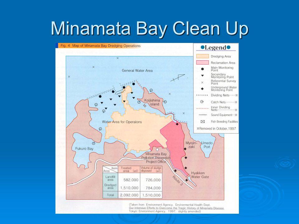 Minamata Bay Clean Up