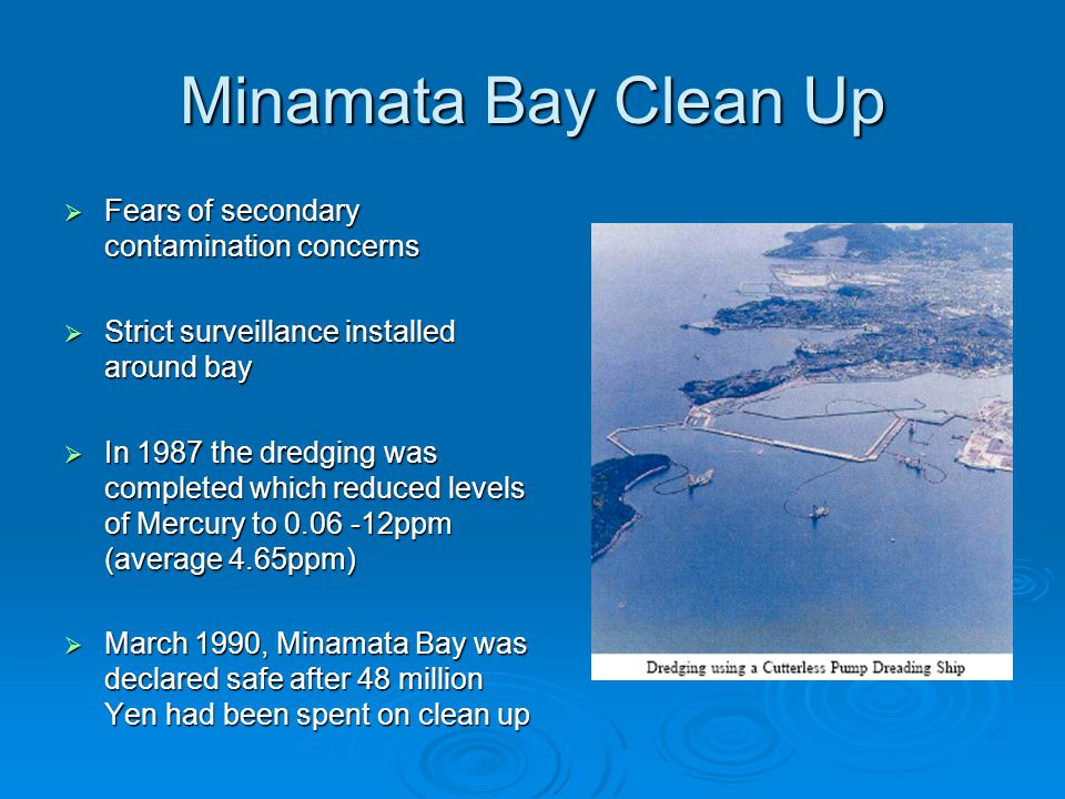 Minamata Bay Clean Up  Fears of secondary contamination concerns  Strict surveillance installed around bay  In 1987 the dredging was completed which reduced levels of Mercury to 0.06 -12ppm (average 4.65ppm)  March 1990, Minamata Bay was declared safe after 48 million Yen had been spent on clean up