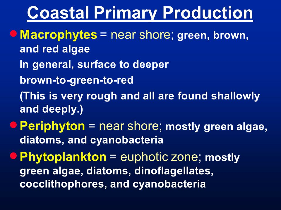 Coastal Primary Production  Macrophytes = near shore; green, brown, and red algae In general, surface to deeper brown-to-green-to-red (This is very rough and all are found shallowly and deeply.)  Periphyton = near shore; mostly green algae, diatoms, and cyanobacteria  Phytoplankton = euphotic zone; mostly green algae, diatoms, dinoflagellates, cocclithophores, and cyanobacteria