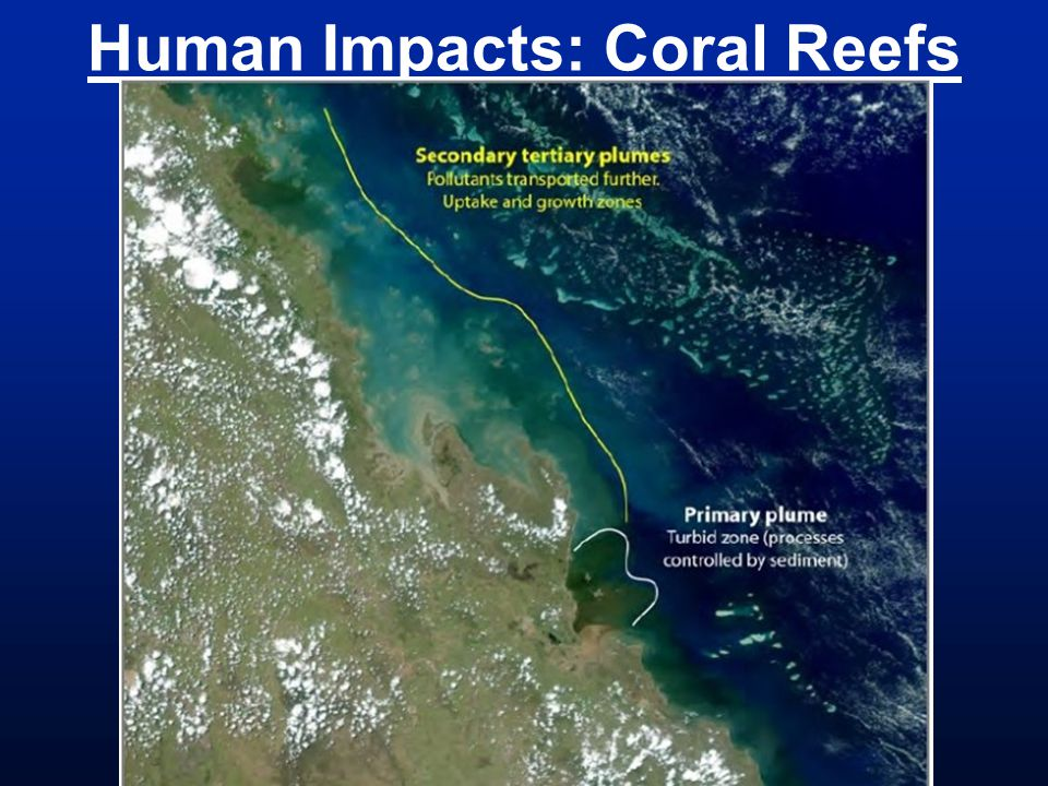 Human Impacts: Coral Reefs