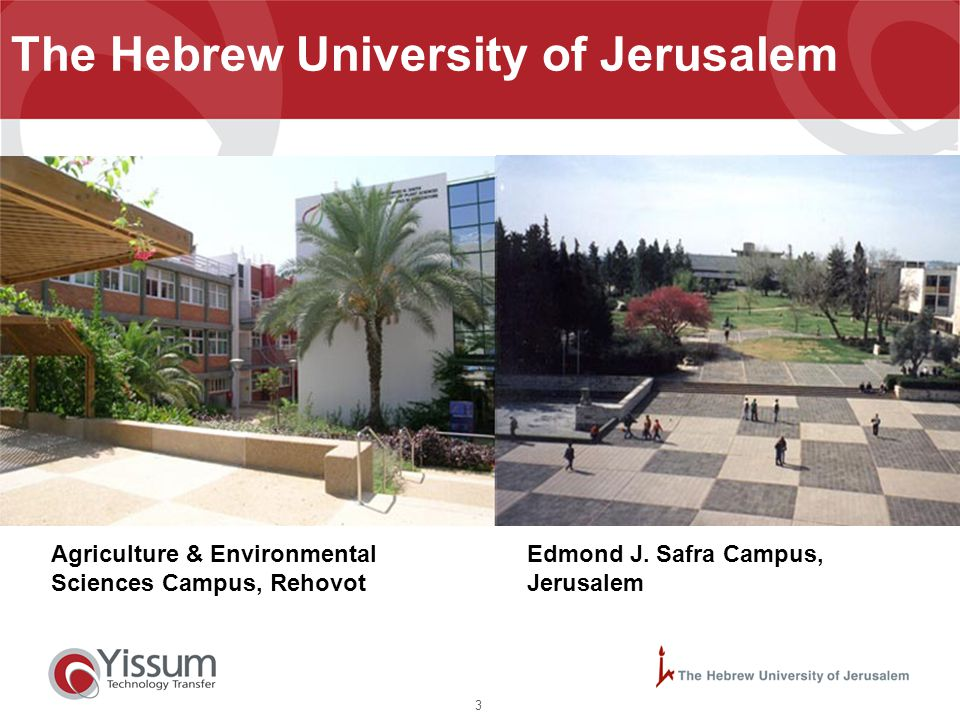 4 The Hebrew University of Jerusalem Ein Kerem Campus, Jerusalem
