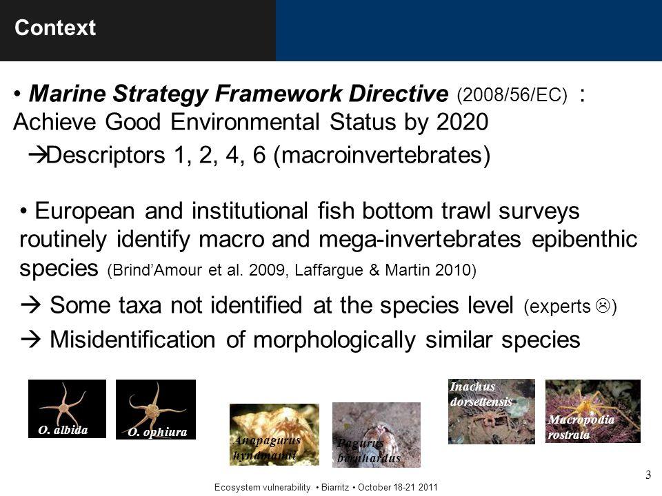 3 Ecosystem vulnerability Biarritz October 18-21 2011 Context Marine Strategy Framework Directive (2008/56/EC) : Achieve Good Environmental Status by 2020  Descriptors 1, 2, 4, 6 (macroinvertebrates) O.