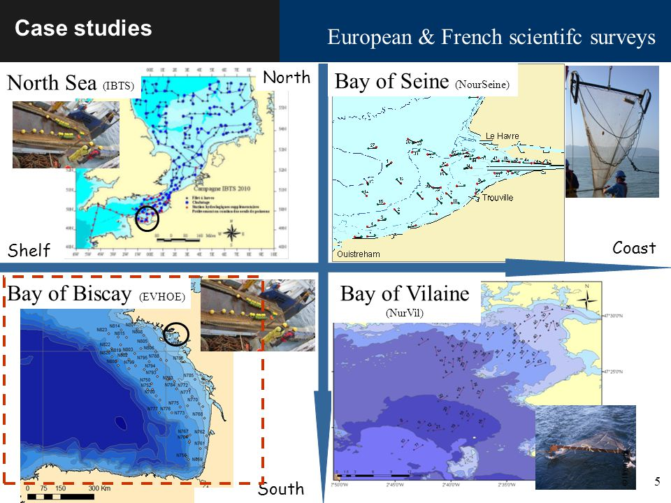 5 Ecosystem vulnerability Biarritz October 18-21 2011 Case studies European & French scientifc surveys South Bay of Biscay (EVHOE) North Sea (IBTS) North Shelf Coast Bay of Seine (NourSeine) Bay of Vilaine (NurVil) © Ifremer