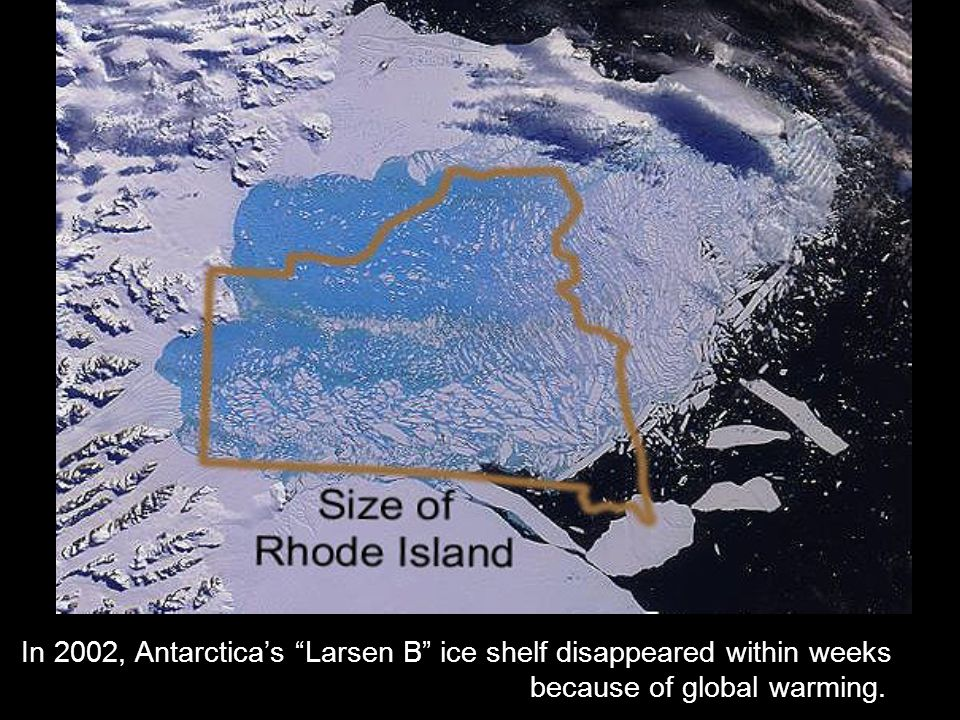 "In 2002, Antarctica's ""Larsen B"" ice shelf disappeared within weeks because of global warming."