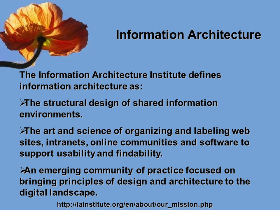 What Users Want Information architecture exists to serve the needs of its users.