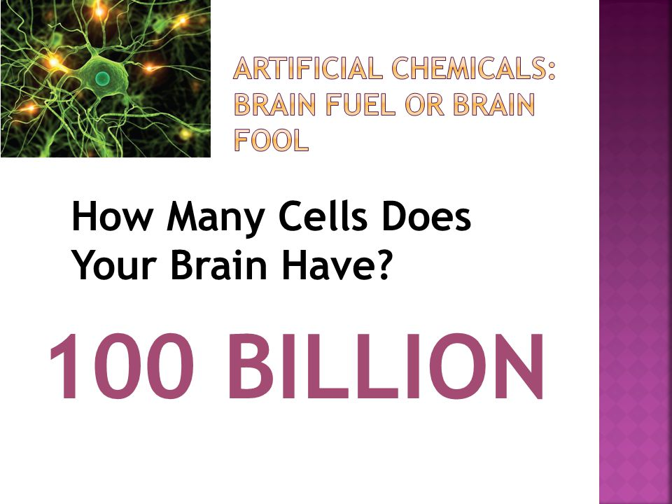How Many Cells Does Your Brain Have 100 BILLION