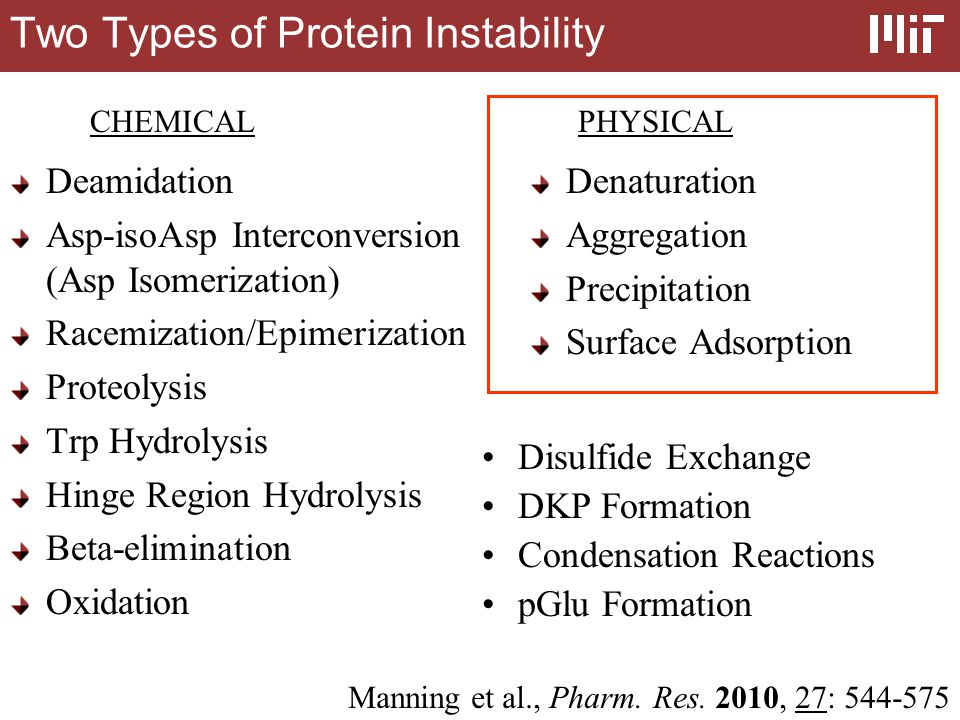 Differences of Proteins from Small Molecules 1 Proteins are multi-functional 2 Most proteins adopt a globular structure that is essential for activity 3 Molecular weight differences 4 Numerous chiral centers in proteins 5 Unique pH response for each protein 6 Proteins are immunogenic