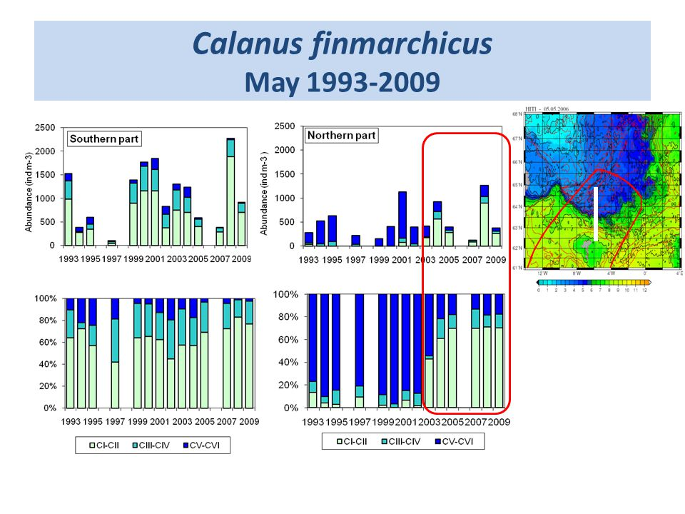 Calanus finmarchicus May 1993-2009