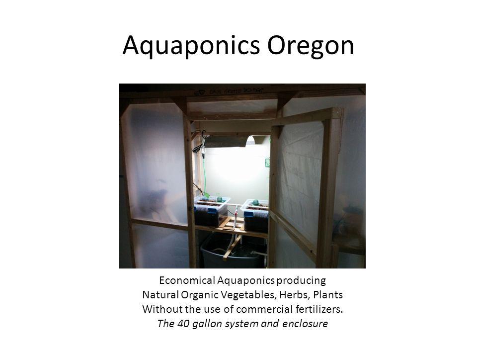 Aquaponics Oregon Economical Aquaponics producing Natural Organic Vegetables, Herbs, Plants Without the use of commercial fertilizers.