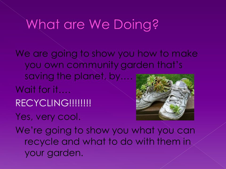 We are going to show you how to make you own community garden that's saving the planet, by….