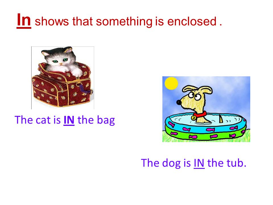 The cat is IN the bag In shows that something is enclosed. The dog is IN the tub.