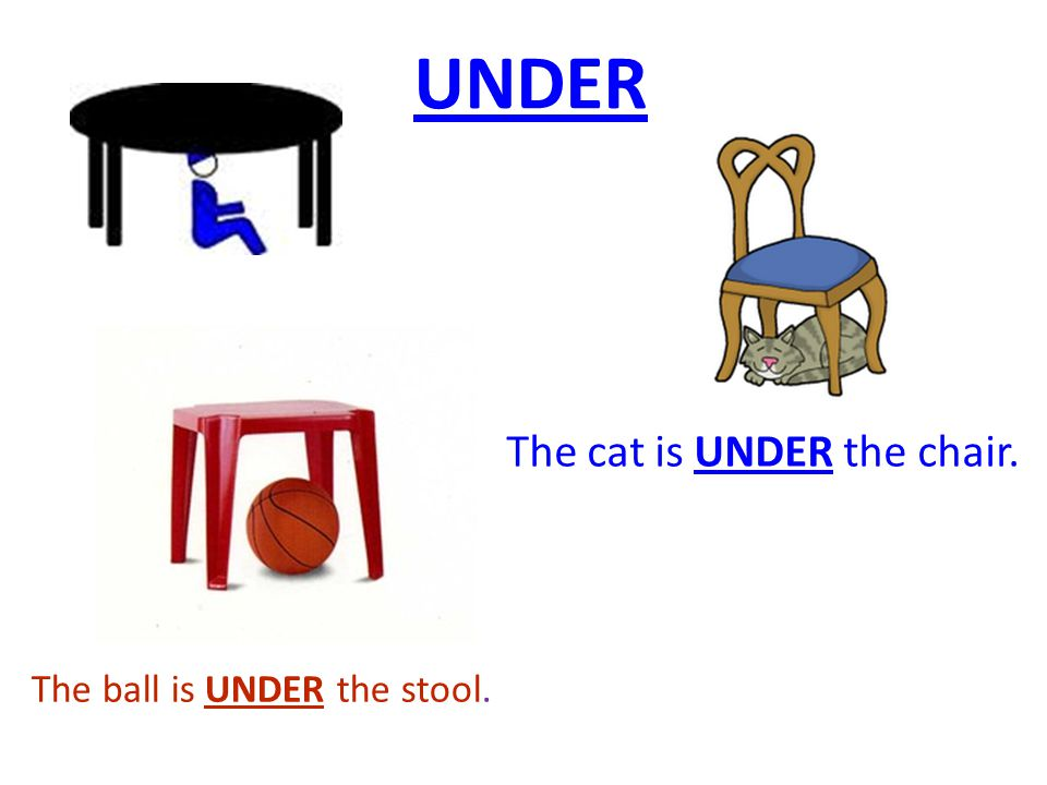 The ball is UNDER the stool. The cat is UNDER the chair. UNDER