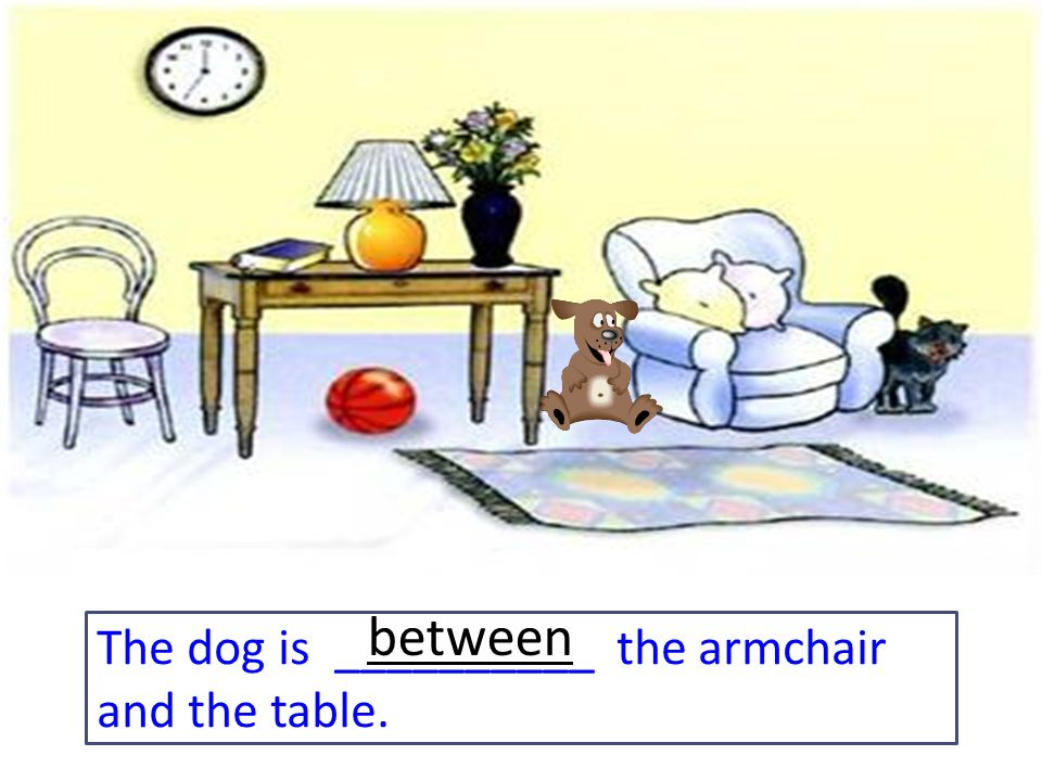 The dog is __________ the armchair and the table. between