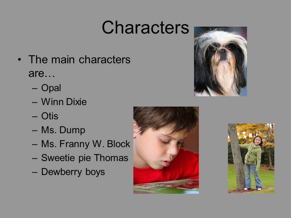 Characters The main characters are… –Opal –Winn Dixie –Otis –Ms.