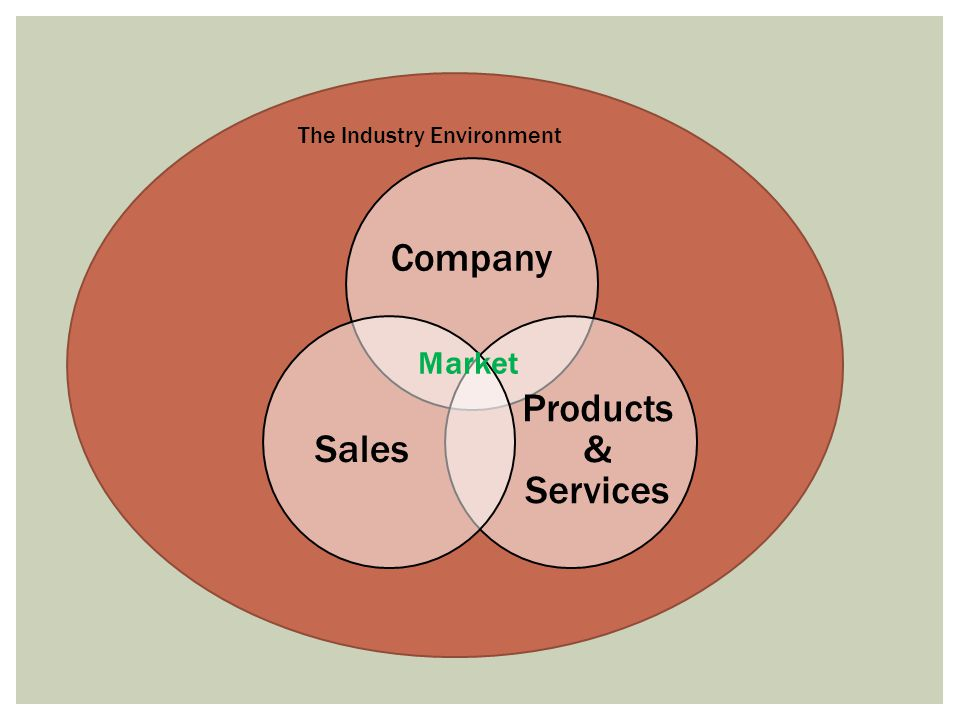 Company Products & Services Sales The Industry Environment Market