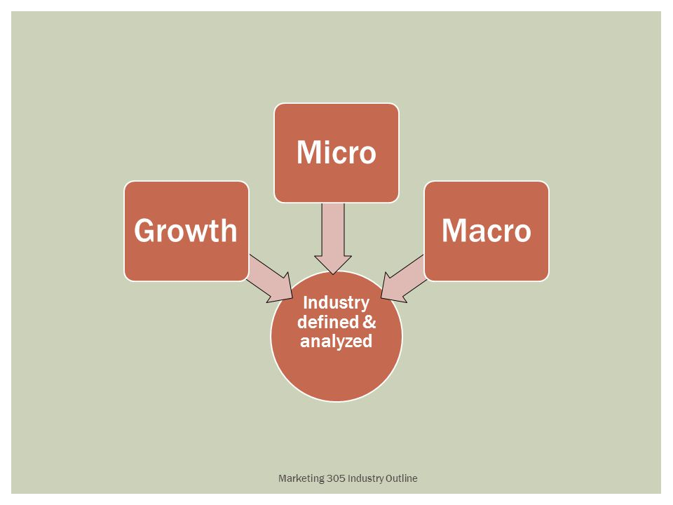 Industry defined & analyzed GrowthMicroMacro Marketing 305 Industry Outline