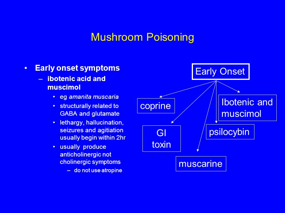 Mushroom Poisoning Early onset symptoms –ibotenic acid and muscimol eg amanita muscaria structurally related to GABA and glutamate lethargy, hallucination, seizures and agitiation usually begin within 2hr usually produce anticholinergic not cholinergic symptoms –do not use atropine Early Onset coprine GI toxin Ibotenic and muscimol muscarine psilocybin