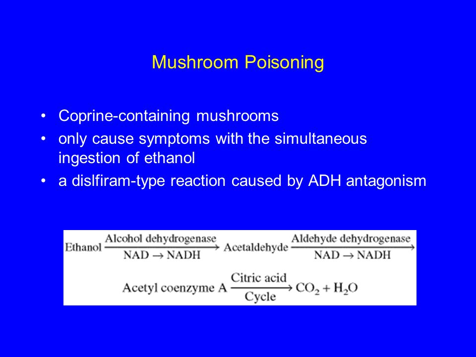 Mushroom Poisoning Coprine-containing mushrooms only cause symptoms with the simultaneous ingestion of ethanol a dislfiram-type reaction caused by ADH antagonism