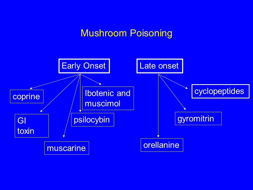 Mushroom Poisoning Early OnsetLate onset coprine GI toxin Ibotenic and muscimol muscarine psilocybin cyclopeptides gyromitrin orellanine