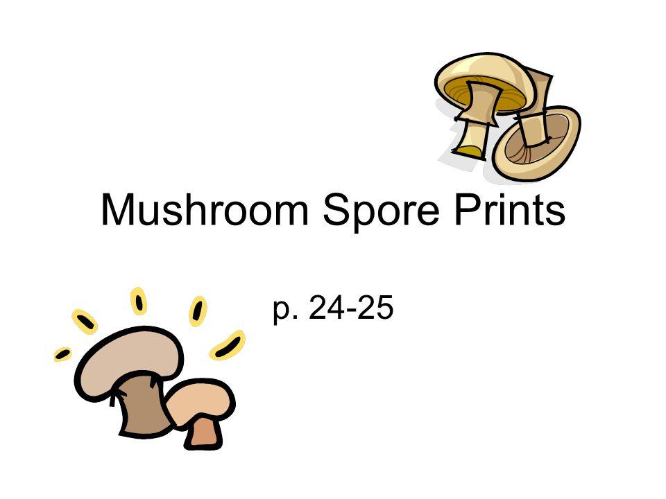 Mushroom Spore Prints p. 24-25