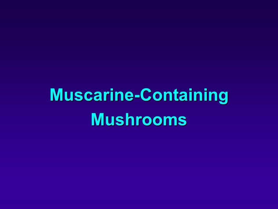 Muscarine-Containing Mushrooms