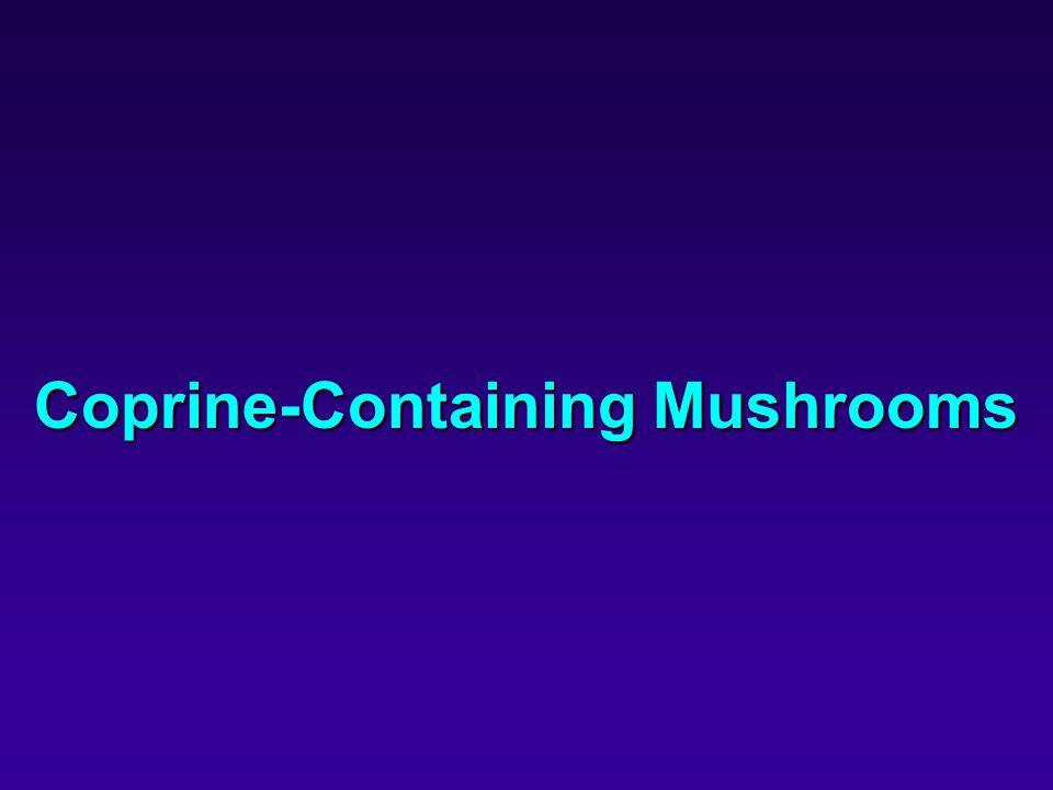 Coprine-Containing Mushrooms