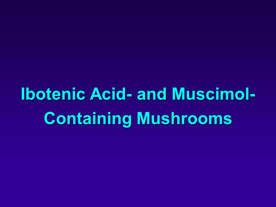 Ibotenic Acid- and Muscimol- Containing Mushrooms