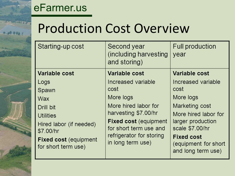 eFarmer.us Production Cost Overview Starting-up costSecond year (including harvesting and storing) Full production year Variable cost Logs Spawn Wax Drill bit Utilities Hired labor (if needed) $7.00/hr Fixed cost (equipment for short term use) Variable cost Increased variable cost More logs More hired labor for harvesting $7.00/hr Fixed cost (equipment for short term use and refrigerator for storing in long term use) Variable cost Increased variable cost More logs Marketing cost More hired labor for larger production scale $7.00/hr Fixed cost (equipment for short and long term use)