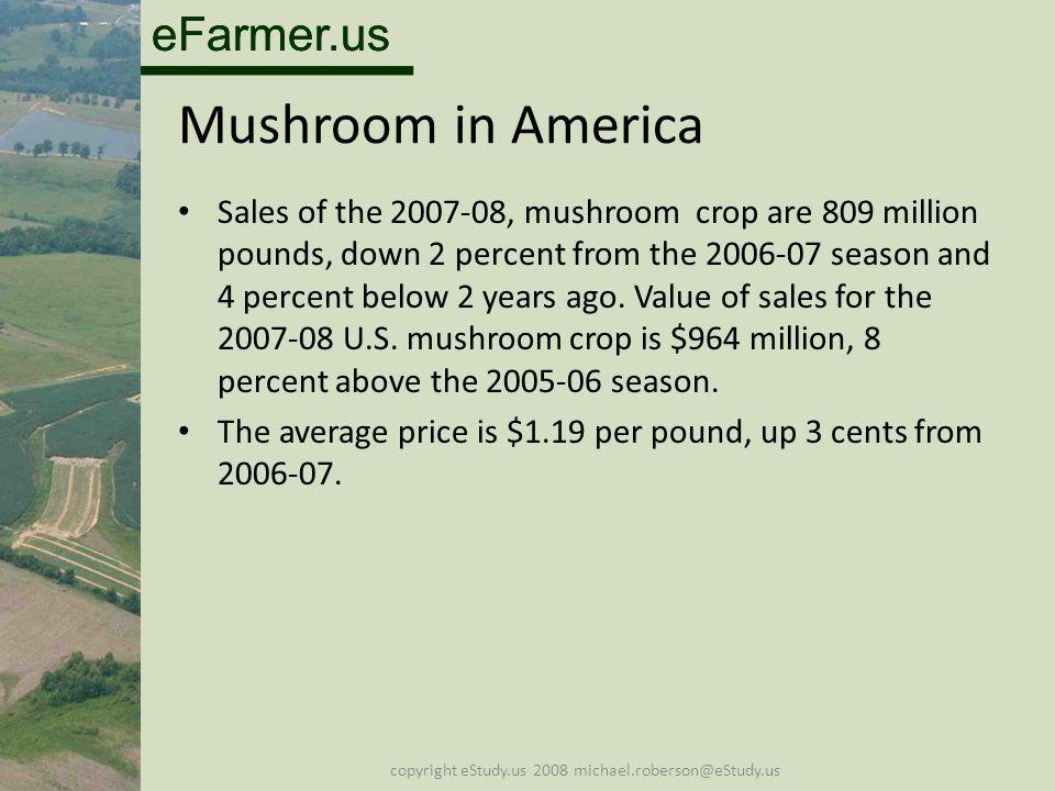 eFarmer.us copyright eStudy.us 2008 michael.roberson@eStudy.us Mushroom in America Sales of the 2007-08, mushroom crop are 809 million pounds, down 2